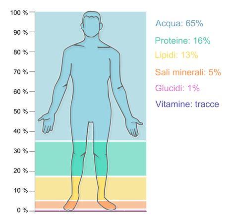 2 litri d acqua quanti bicchieri sono acqua quanto e cosa bere in caso di sport