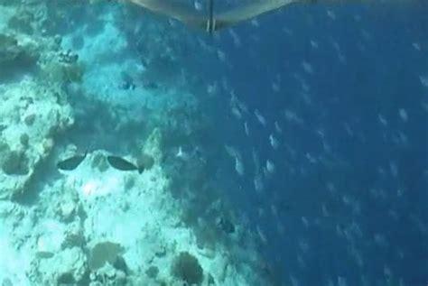 glass bottom boat cancun luxury beach resorts glass bottom boat tour
