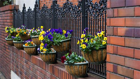 Wrought Iron Railing Planter Box by 45 Beautiful Fence Planters Decorate Your Garden Fence Designing Idea