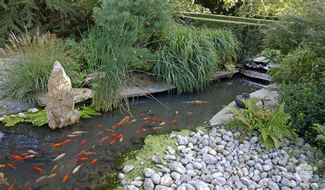 Pour Bassin by Bien Choisir Sa Filtration De Bassin Jardinerie Truffaut