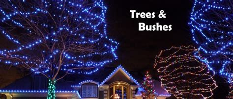 christmas light blue bushes lighting for trees and bushes