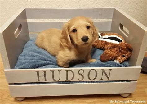 dog bed for crate best 25 raised dog beds ideas on pinterest elevated dog