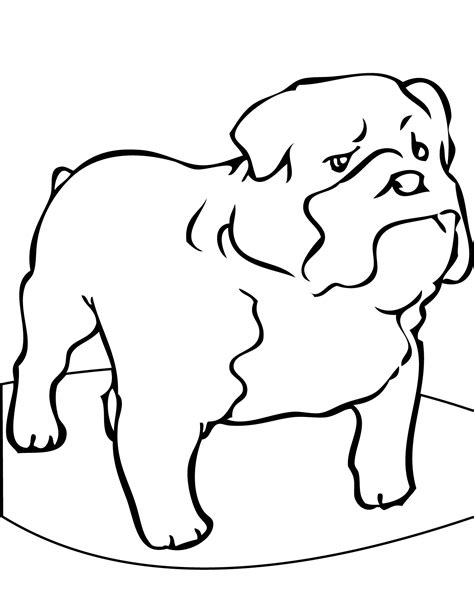 coloring pictures of bulldogs bulldog coloring pages coloringsuite com