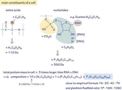 protein elements dna lipids protein related keywords dna lipids protein