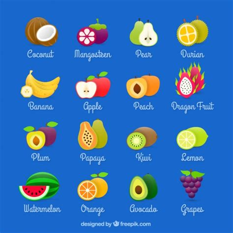 fruit images fruits collection vector free