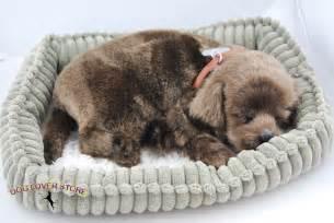 Dachshund Home Decor Chocolate Lab Life Like Stuffed Animal Breathing Dog