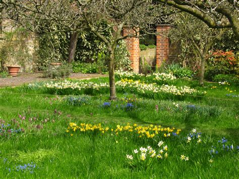Orchard Garden by Meadow In The Orchard Garden At Fenton House