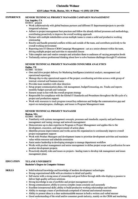 Senior Technical Project Manager Resume Samples | Velvet Jobs