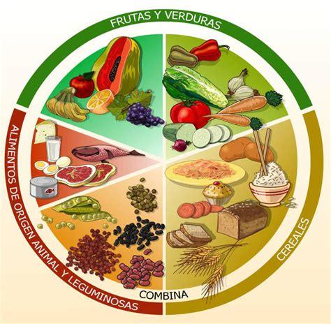 el plato del buen comer come saludable sin sacrificios desarrollo fisico y salud el plato del buen comer 191 para que me sirve