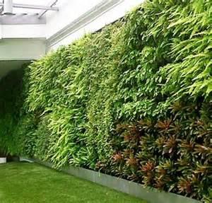 Vertical Garden Companies Green Walls Vertical Garden Company Living Wall Delhi Ncr