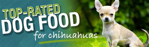 chihuahua puppy food what is the best food for a chihuahua