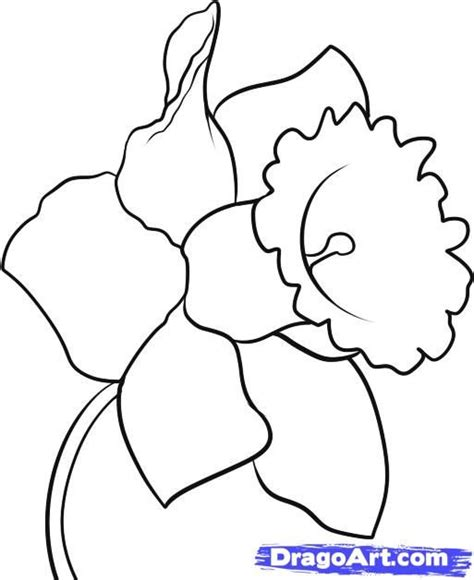 25 best ideas about flowers to draw on pinterest how to