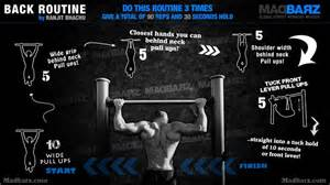 best bodyweight back exercises and workout routines