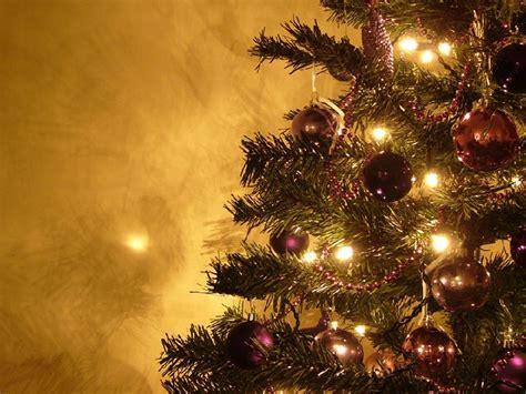 el iva en 2015 un palo m s en la rueda de los el 193 rbol de navidad regi 243 n de murcia digital
