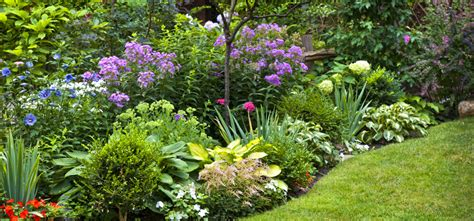 Garden Flowers A Z 2016 Newsletter 10 Celebrate The Earth Trees Flowers And Bees America S Best Flowers