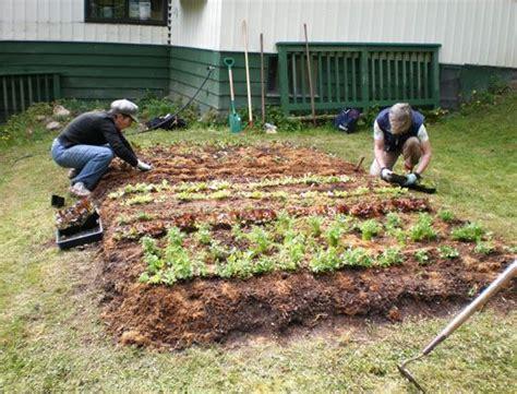 building  lasagna garden pin    pretty