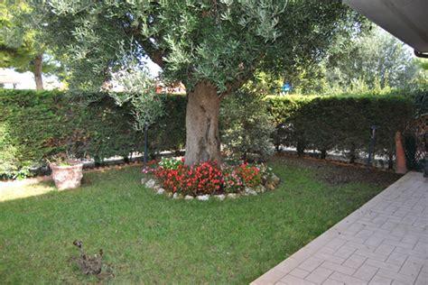 immagini di villette con giardino villette a schiera in vendita a porto recanati cod 273