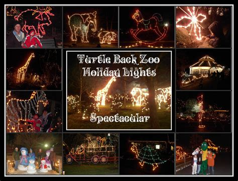 turtle back zoo light show turtle back zoo light show 2017 decoratingspecial