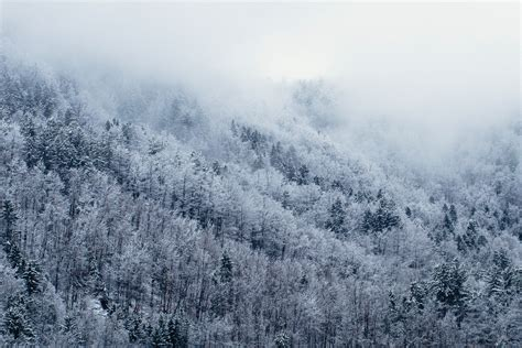 winter images sundance mountain resort winter activities sundance utah
