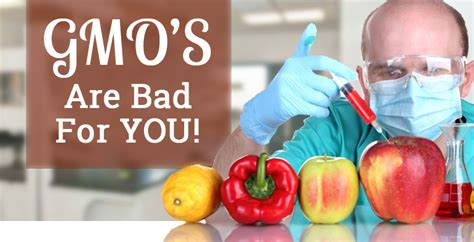 are gmos bad for your health if you re asking this question you re probably missing the point 8 shocking reasons gmos are bad for you nutrition world