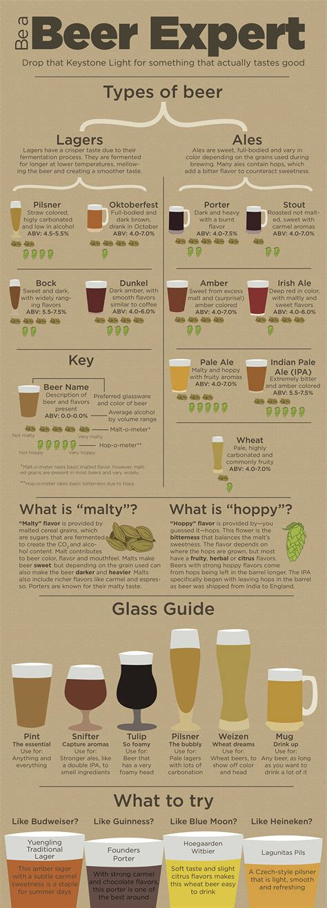 barware glasses guide infographic provides guidance for non craft beer drinkers