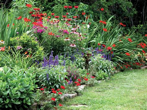 Flowers For Gardens Perennials Photos Hgtv