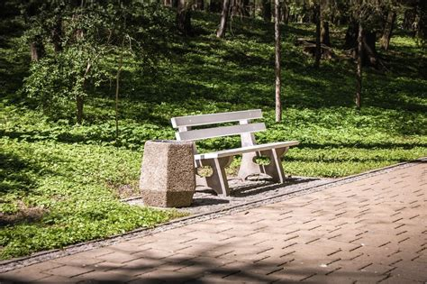 panchina parco foto gratis panchina parco erba legno spazzatura