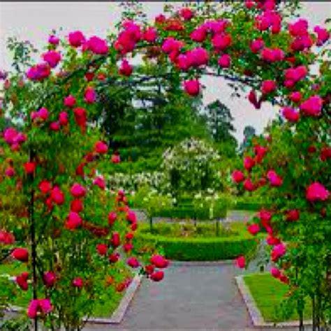 Pretty Garden Trellis Trellis Garden Ideas Flowers