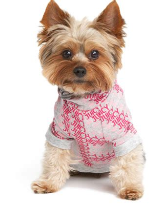 8 Adorable Couture Accessories For Your couture jacquard hoodie 8 adorable