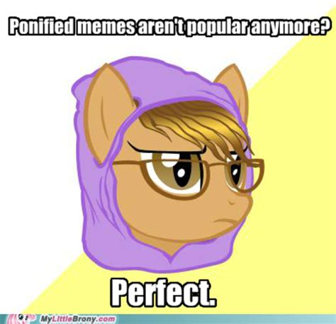 My Little Pony Know Your Meme - image 205789 my little pony friendship is magic