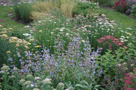 planning an herb garden nelsons herb s blog herb garden design