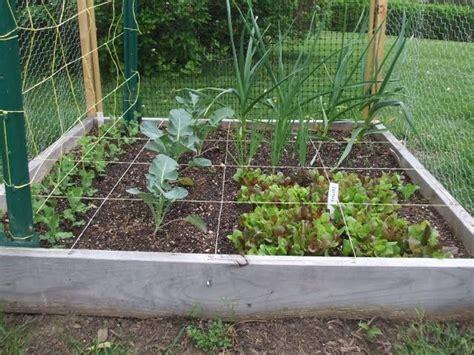 Deer Proof Garden Vegetable Gardens Pinterest Deer Proof Vegetable Garden