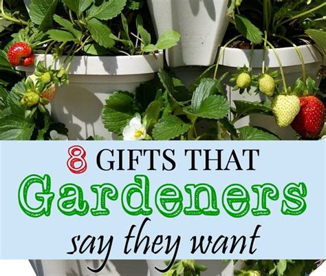 best christmas gifts for gardeners 8 gifts that gardeners want for lovely greens