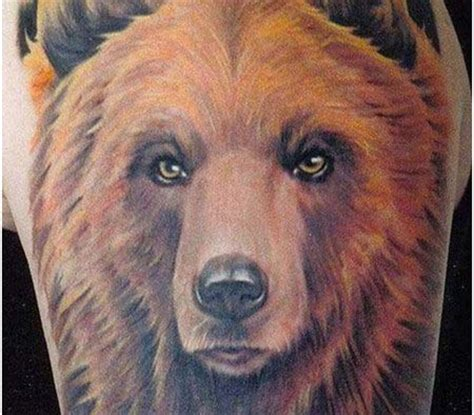 bear face tattoo 1000 images about ideas on gila