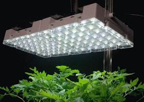 best indoor grow lights 2017 top indoor grow