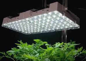 best indoor lights best indoor grow lights 2017 top indoor grow