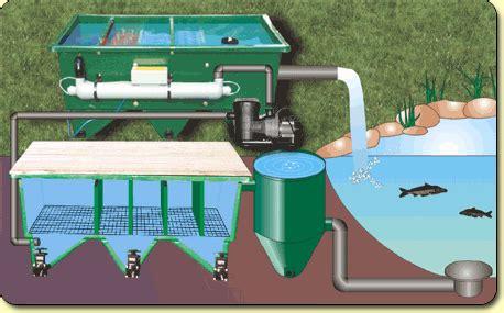 q a alternative filter installations kockney koi