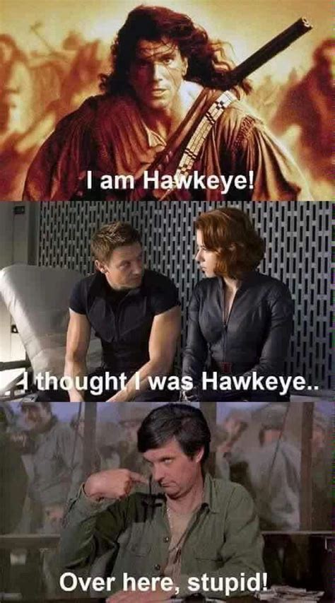 Hawkeye Meme - will the real hawkeye please stand up dhtg