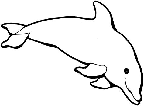Free Dolphin Coloring Pages Dolphins Coloring Page