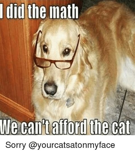 T Dog Meme - i did the math we can t afford the cat sorry cats meme