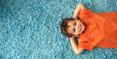 Home Remedies For Cleaning Car Interior Sears Carpet And Upholstery Sears Carpet Upholstery Air