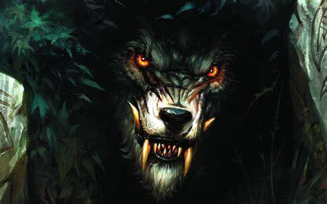 Loup Garou photo de loup garou xq76 jornalagora
