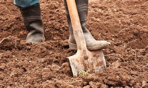 Digging On by Digging For Solutions In The Ground Beneath Our