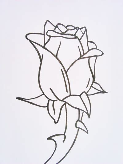 imagenes de flores para dibujar faciles paso a paso c 243 mo dibujar una rosa rosas para dibujar a l 225 piz