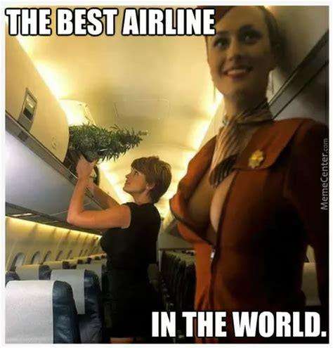 World S Best Memes - best airline in the world weed memes