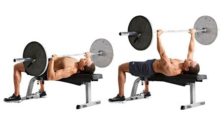 bench press with bar or dumbbells how to pack on 15 pounds of muscle fitbie