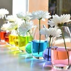 Food For Flowers In Vase by 28 Best Images About Hippie Theme On Photo