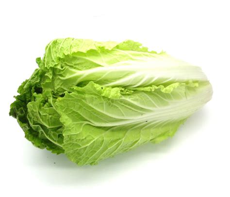 jual keranjang sayur sawi putih organik lemonilocom