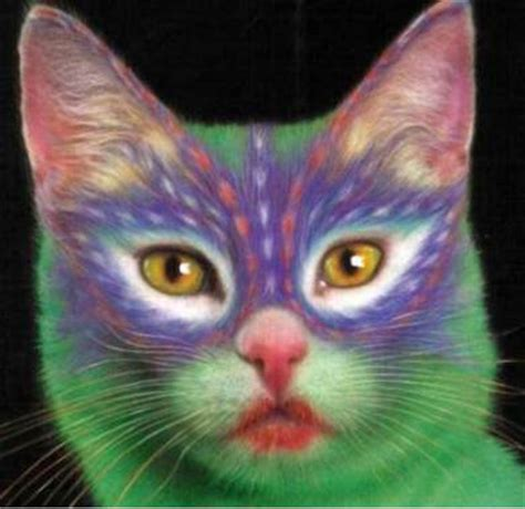 paint like cat painted cats