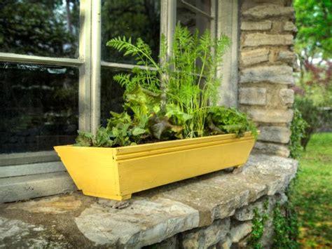 window box vegetable garden grow a window box vegetable garden how tos diy